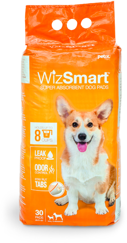 wizsmart-package.png
